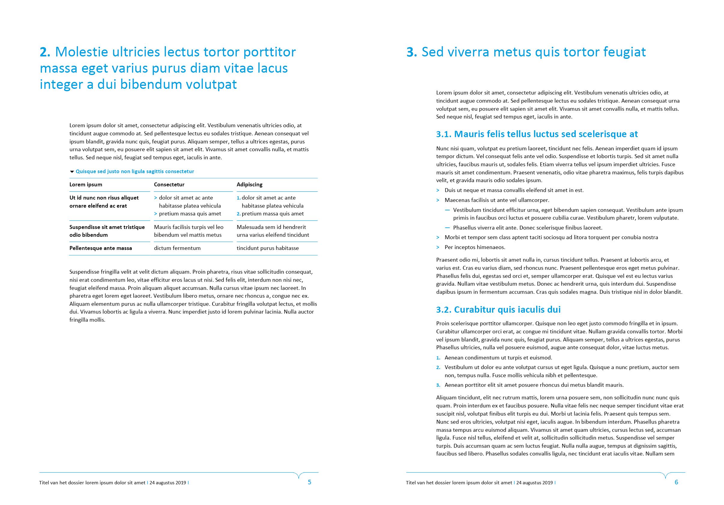 Tekstpagina's van dossier (ingevuld). Microsoft Word-sjabloon voor de Stad Gent.