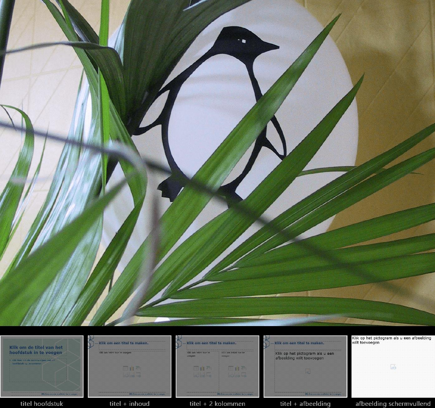 """Dia-type """"afbeelding schermvullend"""" van het Powerpoint-sjabloon voor WGC Nieuw Gent."""