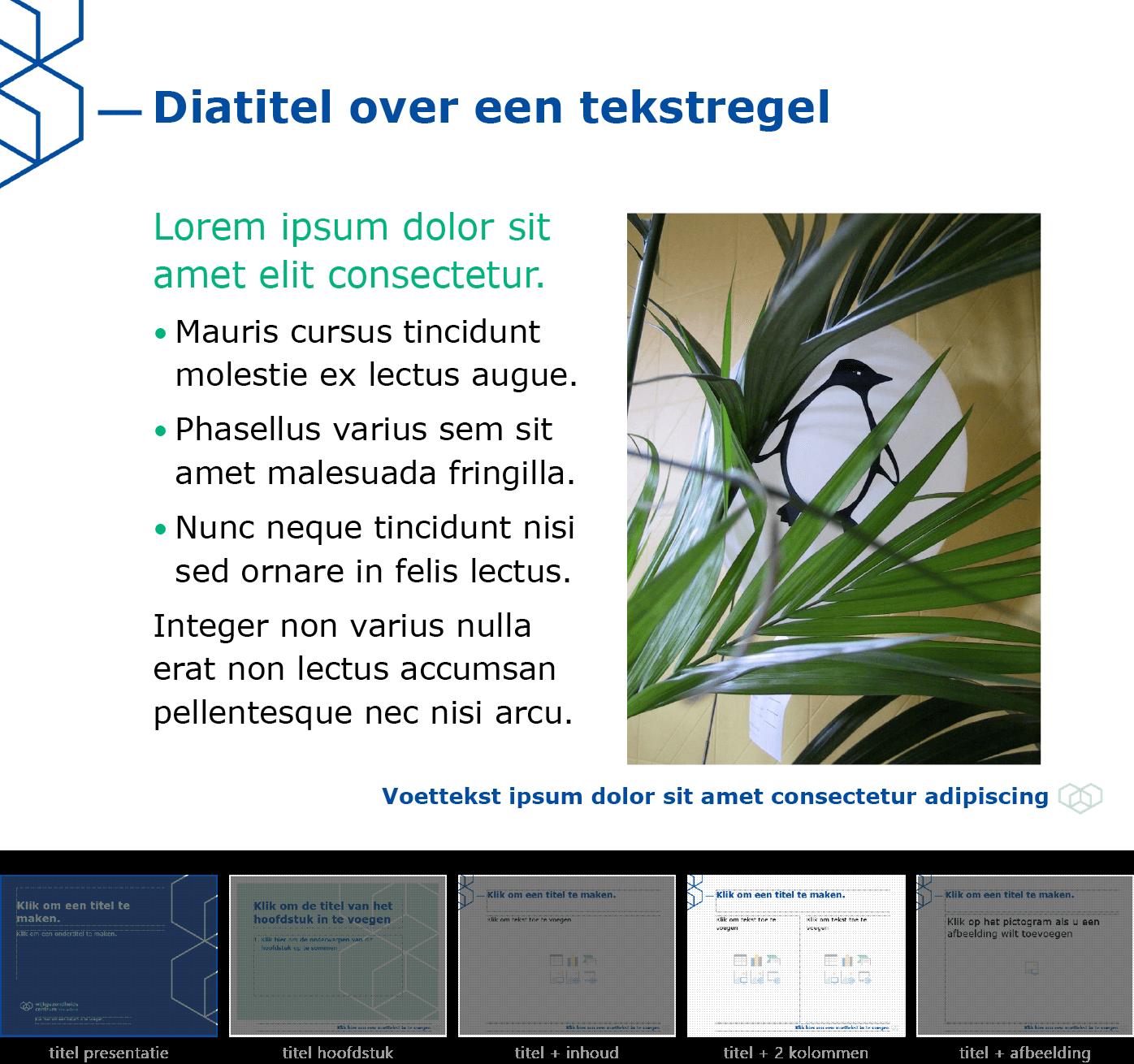 """Afbeelding ingevoegd in het dia-type """"titel + inhoud over twee kolommen"""" van het Powerpoint-sjabloon voor WGC Nieuw Gent."""