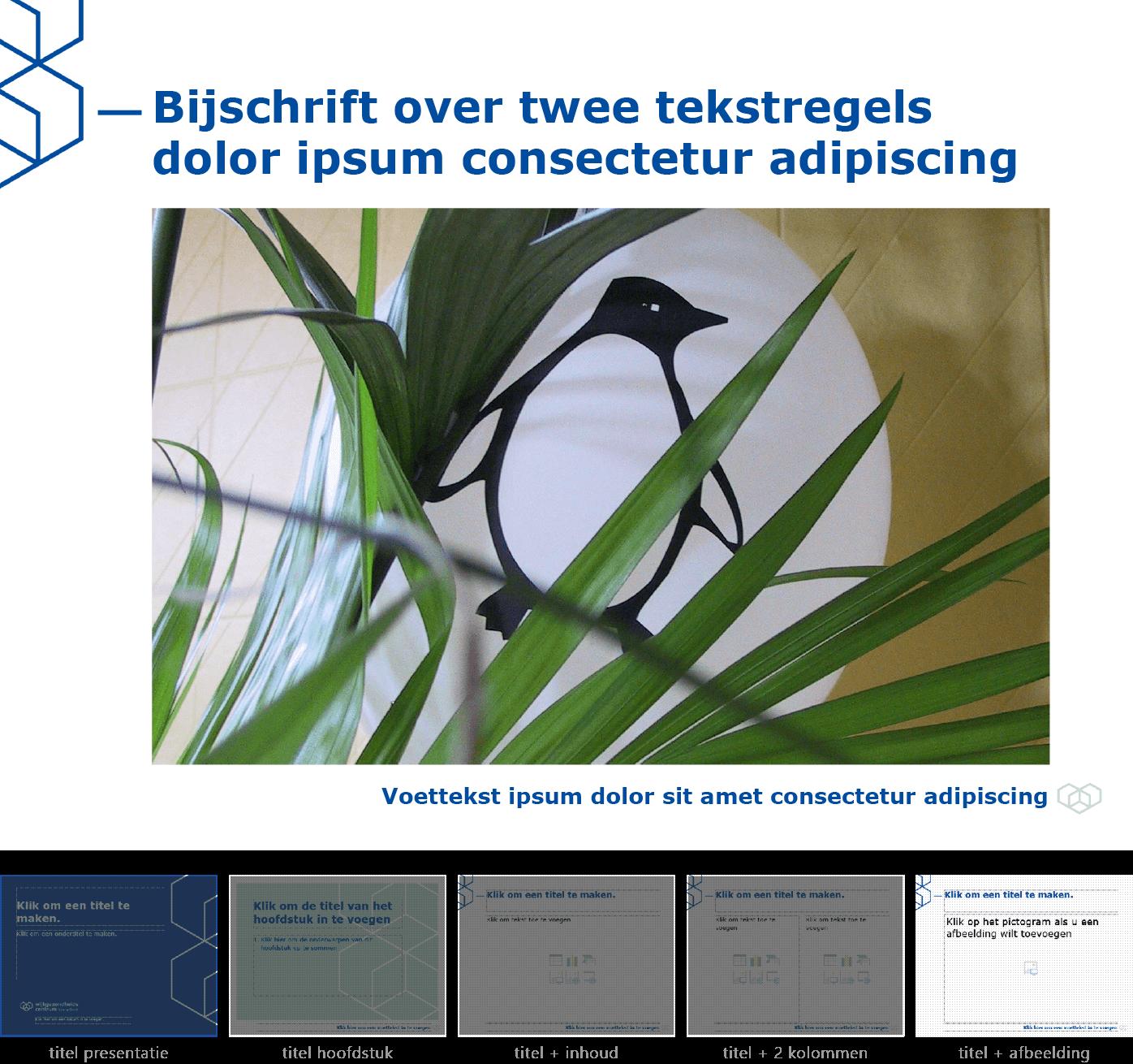 """Dia-type """"titel + afbeelding"""" van het Powerpoint-sjabloon voor WGC Nieuw Gent."""